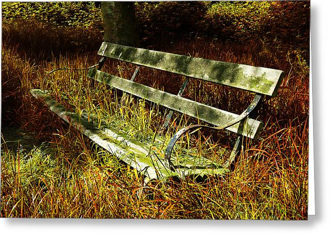 Park Benches Greeting Cards - The Hidden Bench Greeting Card by Mark Rogan