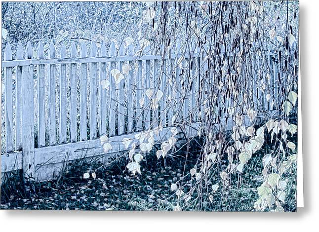 Weeping Greeting Cards - The Hidden Fence Greeting Card by Bonnie Bruno