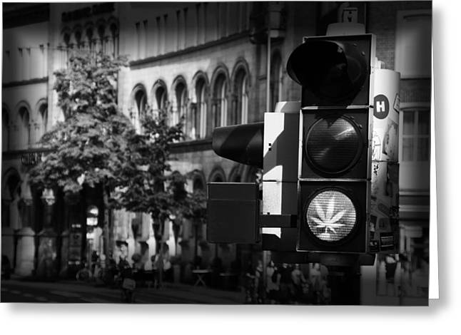 Marijuana Photographs Greeting Cards - The High Light Greeting Card by Mountain Dreams