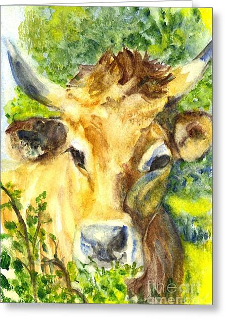 Steer Drawings Greeting Cards - The Highland Bull Greeting Card by Carol Wisniewski