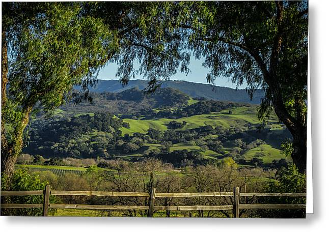 California Vineyard Greeting Cards - The Hills Greeting Card by Ernie Echols