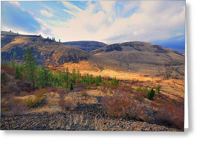 Terra Firma Greeting Cards - The Hills Greeting Card by Gary Silverstein