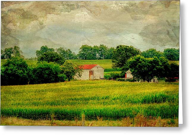 Field. Cloud Greeting Cards - The Hills of PA Greeting Card by Tricia Marchlik