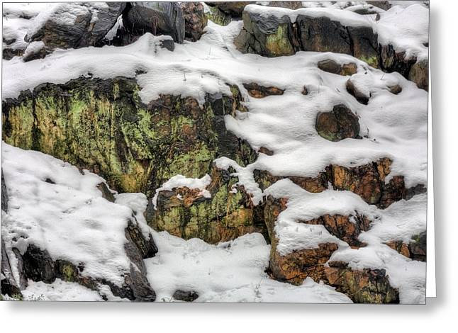 Central Park Winter Greeting Cards - The Himalayas  Greeting Card by JC Findley