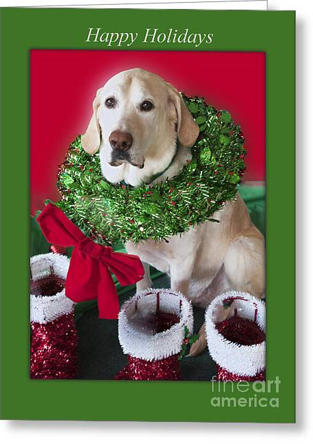 Photographs With Red. Greeting Cards - The Holiday Decorator Greeting Card by Jonathan E Whichard