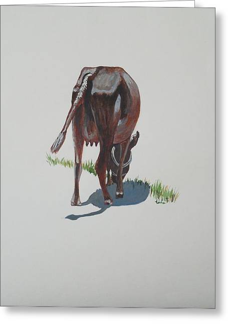 Sacred Cow Greeting Cards - The Holy Cow and dung 3 Greeting Card by Usha Shantharam