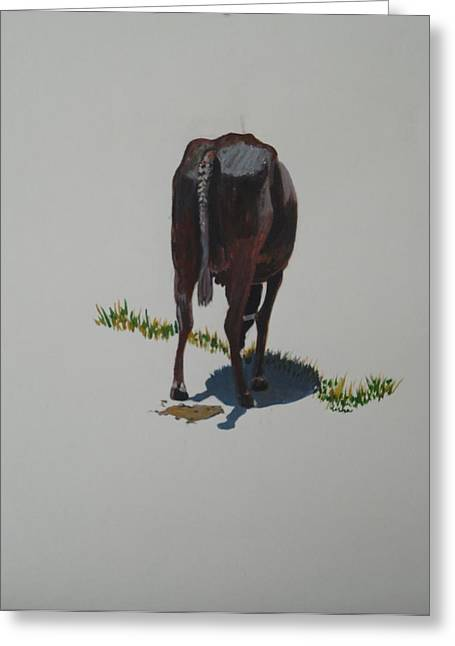 Sacred Cow Greeting Cards - The Holy Cow and dung 5 Greeting Card by Usha Shantharam