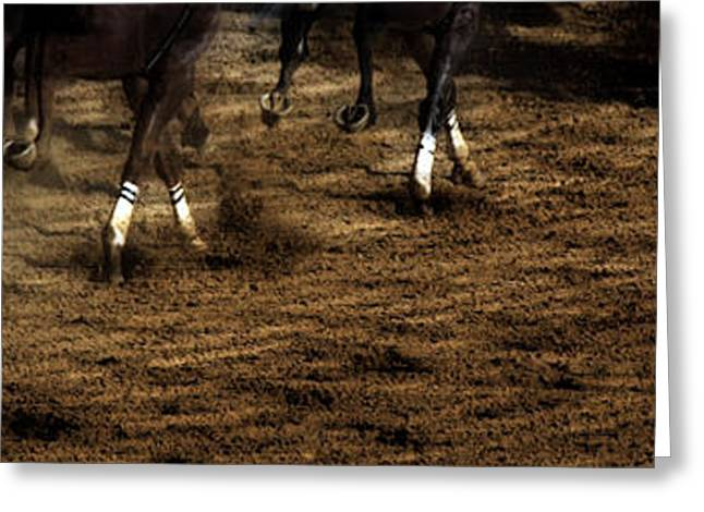 Race Horse Greeting Cards - The Home Stretch  Greeting Card by Steven  Digman