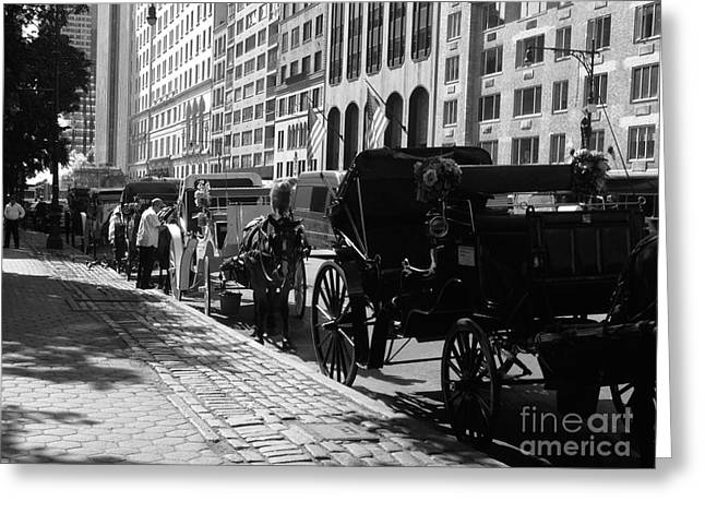 Horse And Buggy Greeting Cards - The Horse and Buggy Lineup Greeting Card by Christy Gendalia