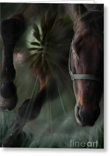 Abstract Expression Greeting Cards - The Horse And The Dandelion Greeting Card by Angel  Tarantella