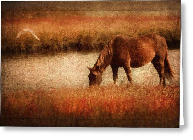 Sepia Greeting Cards - The Horse And The Gull - Vintage Greeting Card by Georgiana Romanovna