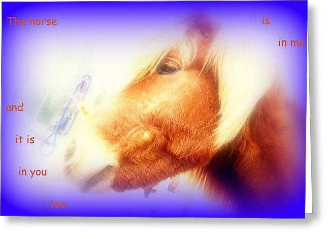Sweating Photographs Greeting Cards - The Horse In Me Greeting Card by Hilde Widerberg
