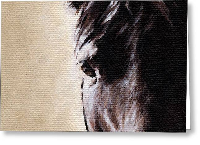 Silhouettes Of Horses Greeting Cards - The Horse Greeting Card by Natasha Denger