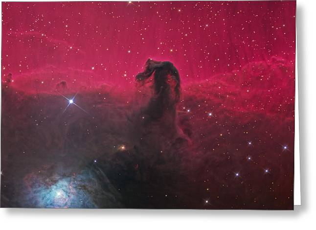 Horsehead Greeting Cards - The Horsehead Nebula Greeting Card by Ken Crawford
