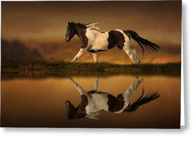 Running Digital Art Greeting Cards - The Horses Journey Greeting Card by Jennifer Woodward