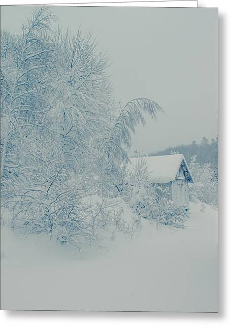Kjona Greeting Cards - The house in the woods Greeting Card by Mirra Photography