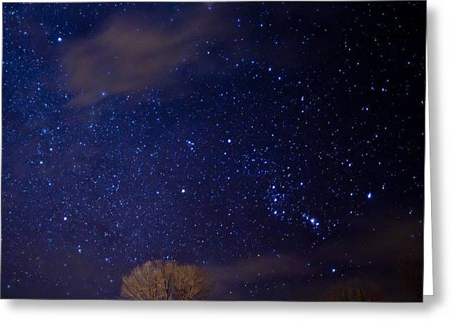 Constellations Greeting Cards - The Hunter And The Eagle Greeting Card by Allen Lefever