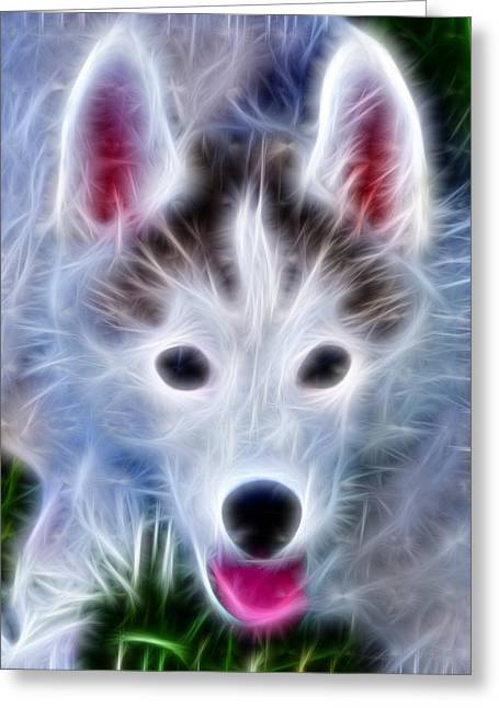 Puppies Digital Art Greeting Cards - The Huskie Pup Greeting Card by Bill Cannon