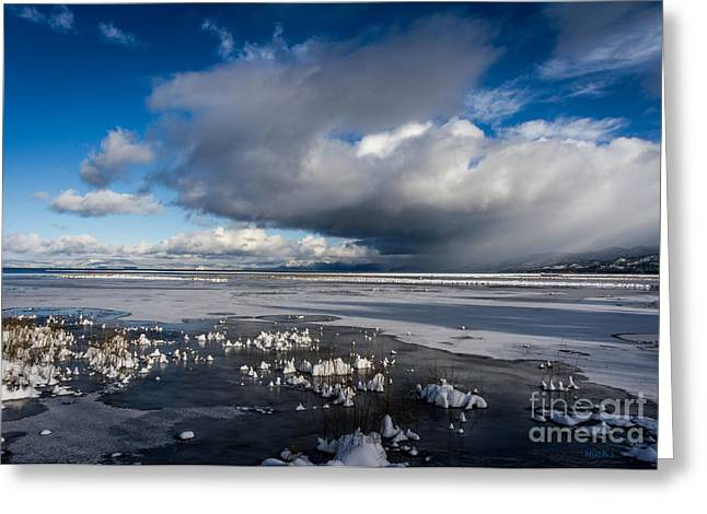 Beautiful Scenery Greeting Cards - The Iceman Cometh Greeting Card by Mitch Shindelbower