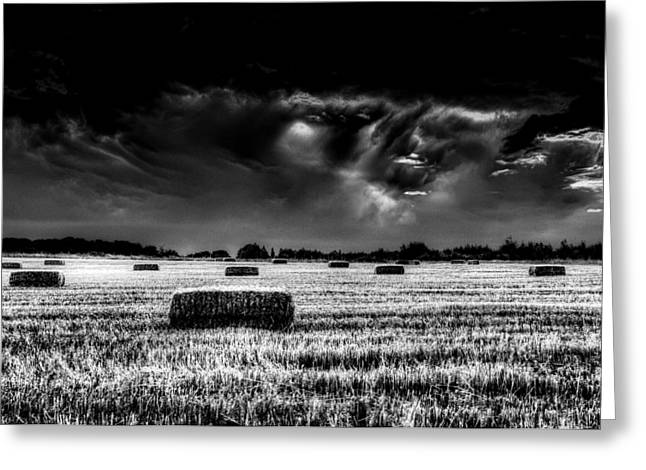 Making Hay Greeting Cards - The Impending storm Greeting Card by David Pyatt