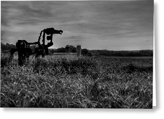 Cornfield Greeting Cards - The Iron Horse Black Beauty Greeting Card by Reid Callaway