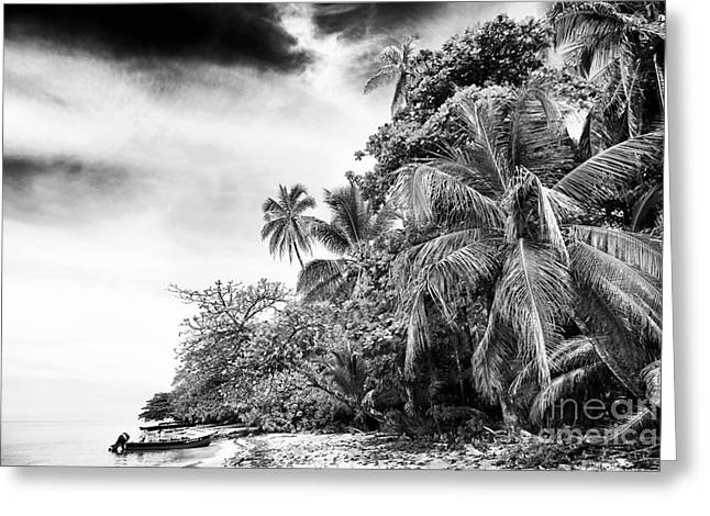 The Island In Black And White Greeting Card by John Rizzuto