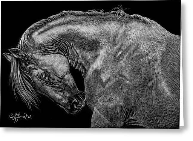 Dressage Drawings Greeting Cards - The Itch Greeting Card by Stephanie Ford