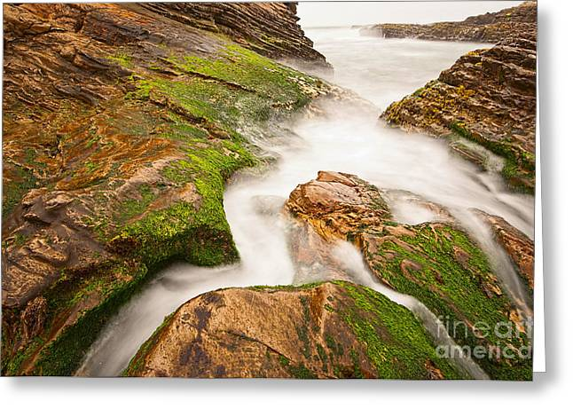 Montana De Oro Greeting Cards - The jagged rocks and cliffs of Montana de Oro State Park in California Greeting Card by Jamie Pham
