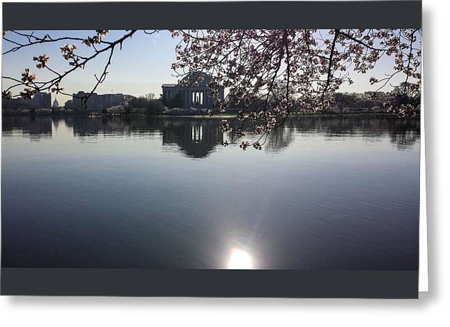 Washingtondc Greeting Cards - The Jefferson Memorial and the US Capitol Through the Cherry Blossoms Greeting Card by Debra Bowers