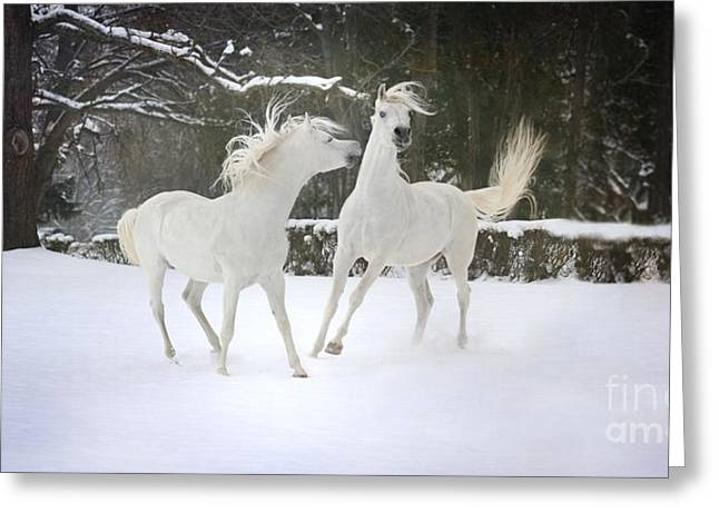 Winter Pyrography Greeting Cards - The Joy Of Winter Greeting Card by Dorota Kudyba