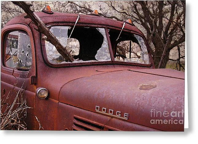 Damaged Photograph Greeting Cards - The Killing Field Greeting Card by Betty LaRue