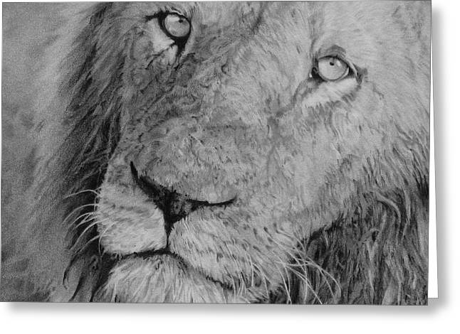 Serengeti Drawing Greeting Cards - The King Greeting Card by Kathryn Hansen