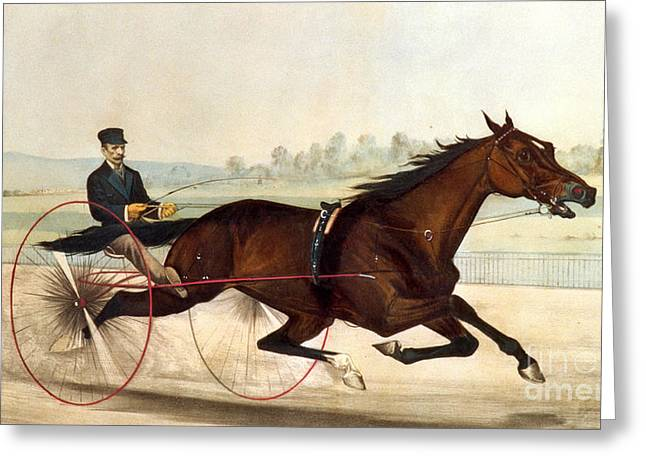 Nathaniel Greeting Cards - The King of the Turf Greeting Card by Currier And Ives