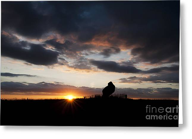 Megalithic Greeting Cards - The King Stone Greeting Card by Tim Gainey