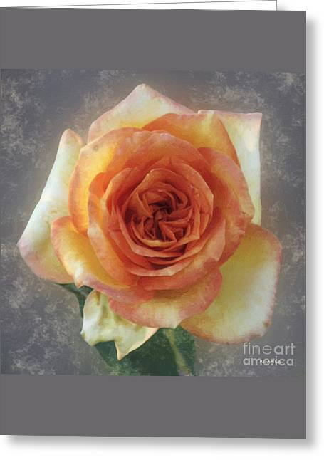 Square Format Greeting Cards - The Kiss of the Rose Greeting Card by RC deWinter