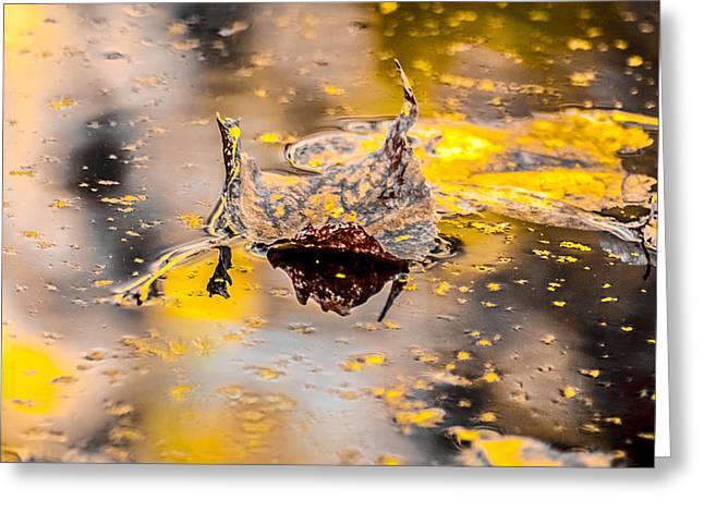 Camelot Greeting Cards - The Lady of Shalott Greeting Card by Optical Playground By MP Ray