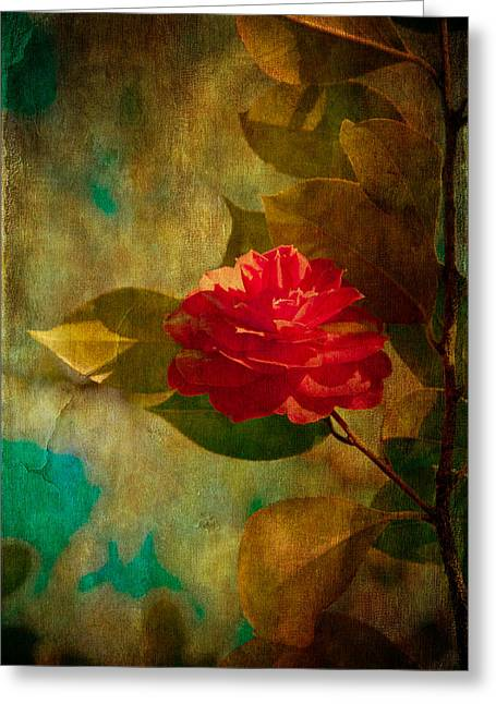 Coloured Greeting Cards - The Lady of the Camellias Greeting Card by Loriental Photography