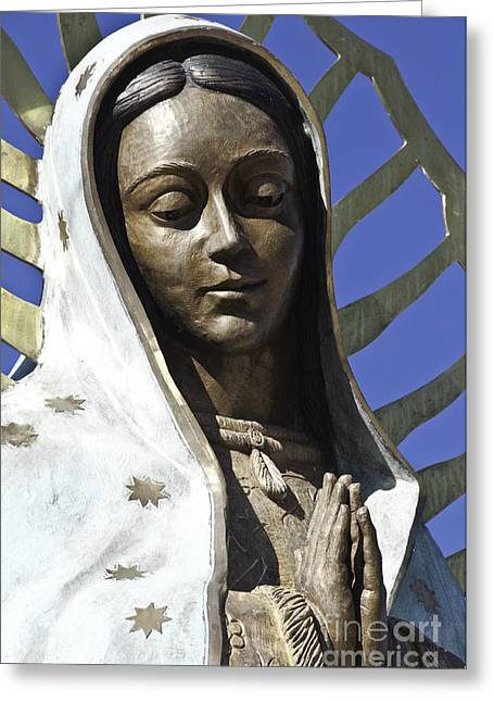 Gold Star Mother Greeting Cards - The Lady Prays Greeting Card by Terry Rowe