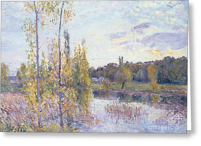 Fertility Paintings Greeting Cards - The Lake at Chevreuil Greeting Card by Alfred Sisley