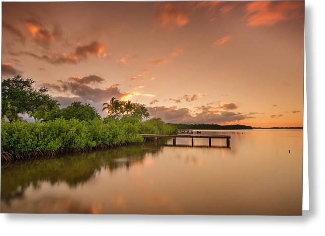 Lahaina Greeting Cards - The Lake Greeting Card by Tin Lung Chao
