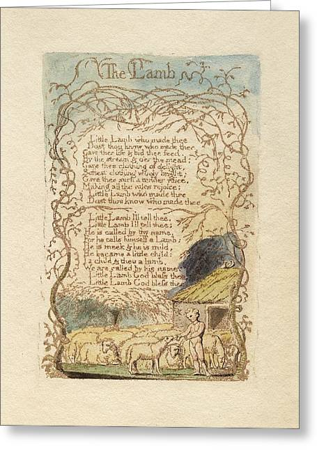William Blake Drawings Greeting Cards - The Lamb Greeting Card by Celestial Images
