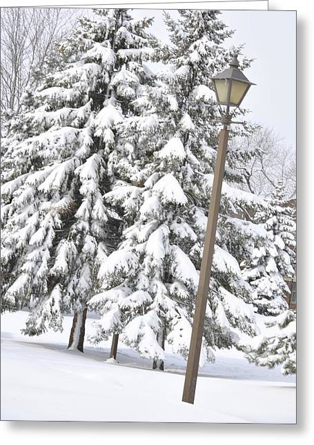 Frederico Borges Photographs Greeting Cards - The lamp and the tree Greeting Card by Frederico Borges