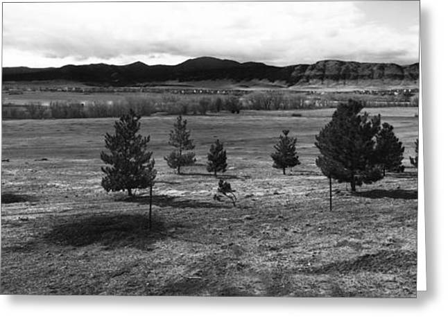 Nicholas Greeting Cards - The Land - BW Greeting Card by Nicholas Evans