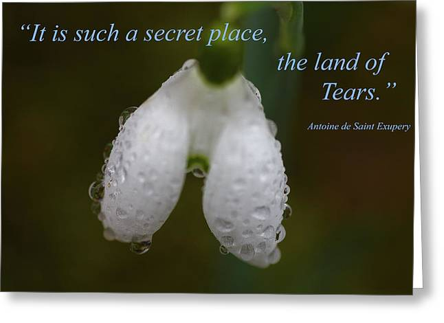 Tears Greeting Cards - The Land Of Tears Greeting Card by Rumyana Whitcher