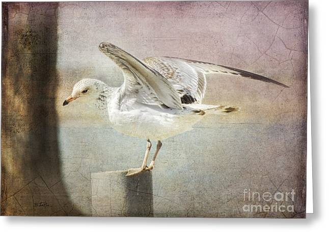 Larus Delawarensis Greeting Cards - The Landing Greeting Card by Betty LaRue