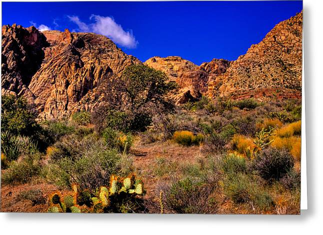 Oxide Greeting Cards - The Landscape of Red Rock Canyon Nevada Greeting Card by David Patterson