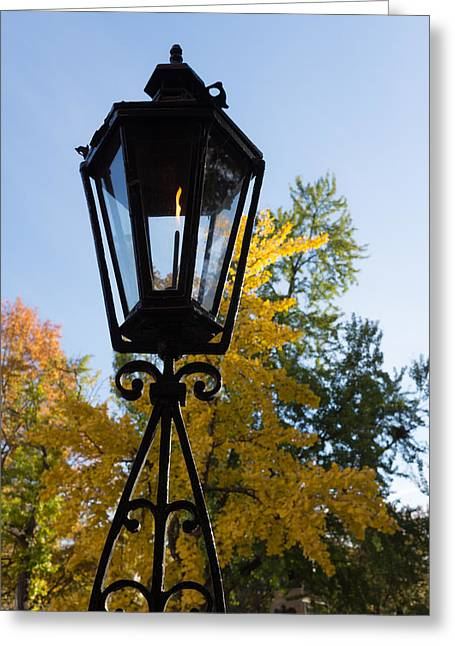 Streetlight Greeting Cards - The Lantern and the Ginkgo - Retro Autumn Mood Greeting Card by Georgia Mizuleva