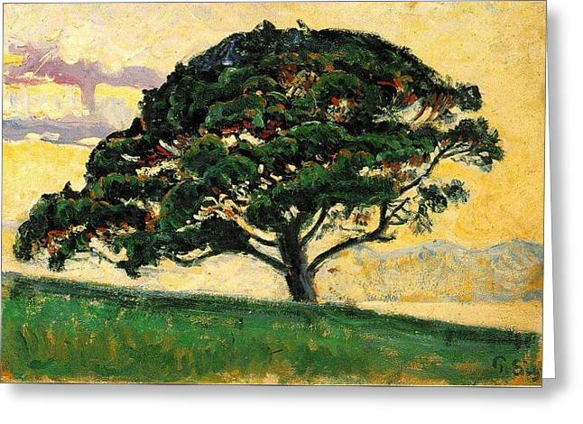 The Large Pine Greeting Card by Paul Signac