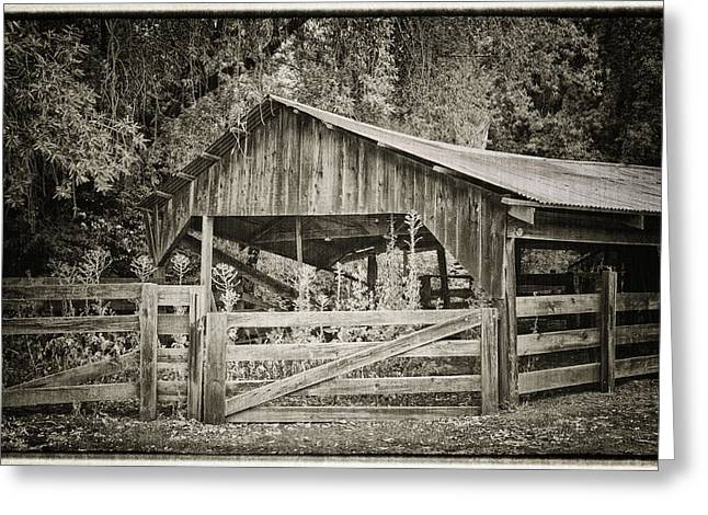 Pinot Noir Greeting Cards - The Last Barn Greeting Card by Joan Carroll