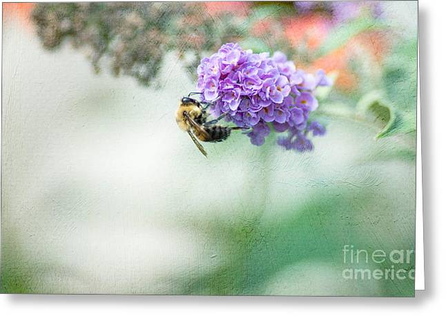 Bees Greeting Cards - The Last Drop Greeting Card by Rebecca Cozart